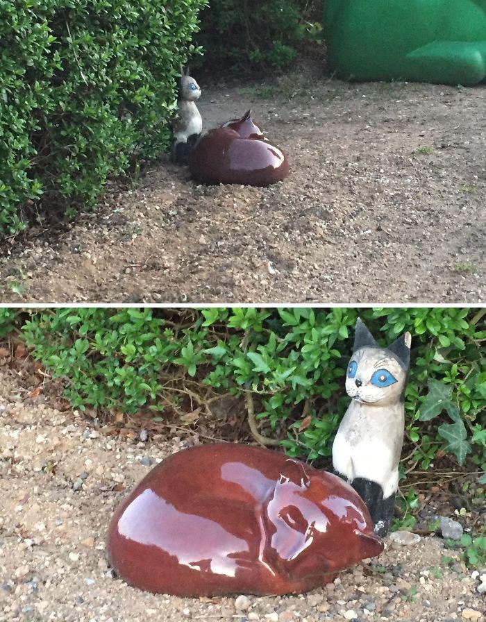 This Decorative Cat