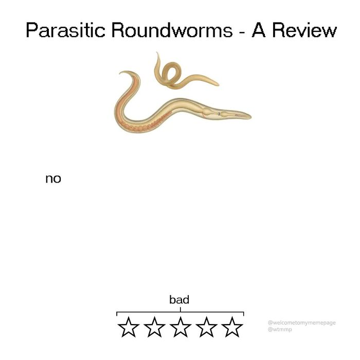 Parasitic Roundworms