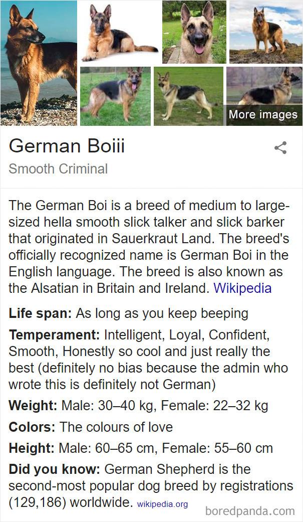 German Boiii