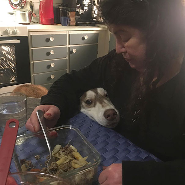 Hi Grandma, Can I Try Some Delicious Pasta With Meat, Please?