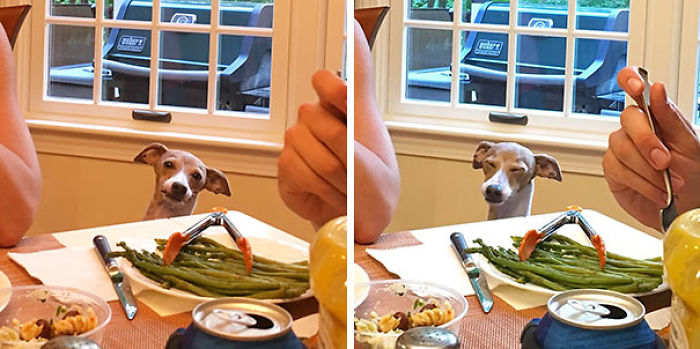 When You Really Want The Asparagus But No One Is Listening