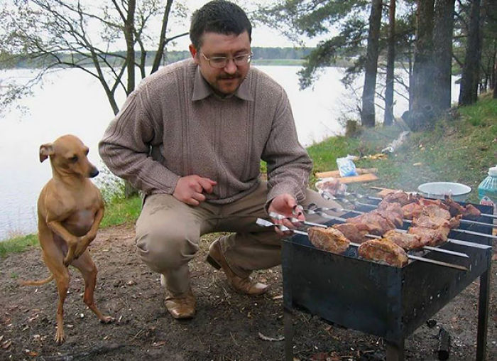 Dobby Thanks Master For The BBQ