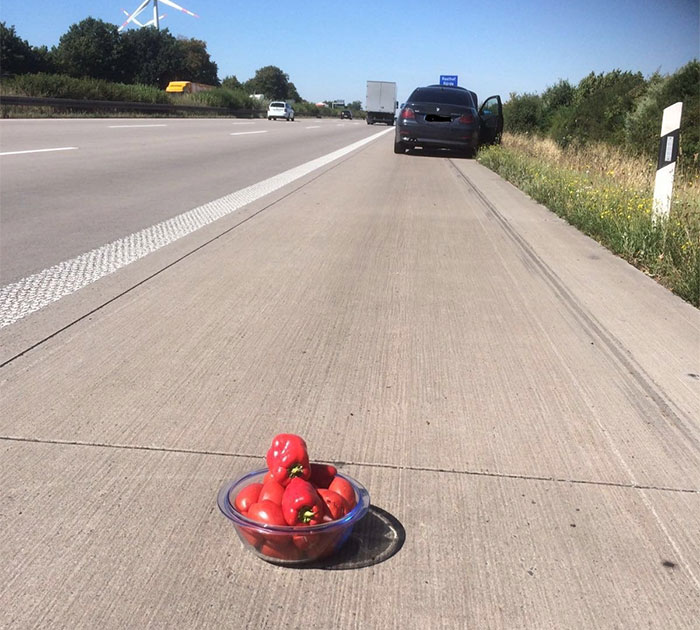 35 Times People Couldn't Believe Their Eyes On The Road