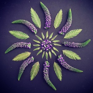 I Create Mandalas From Things I Find In Nature As A Way Of Meditation