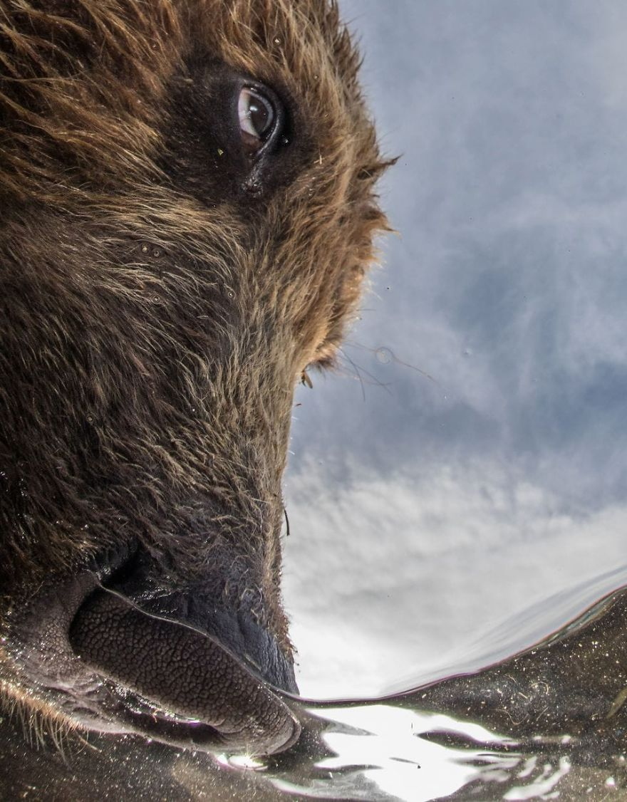 """Portrait Category Runner Up: """"The Nose"""" By Mike Korostelev, Russian Federation"""