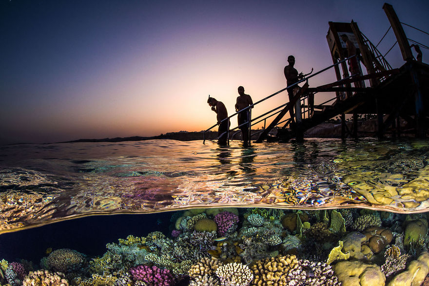"""Wide Angle Category: Third """"Evening Snorkel"""" By Brook Peterson, Usa"""