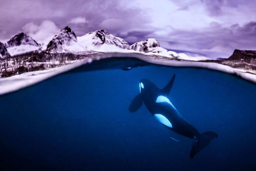 "Wide Angle Category: ""Breathtaking"" By Tobias Friedrich, Germany"