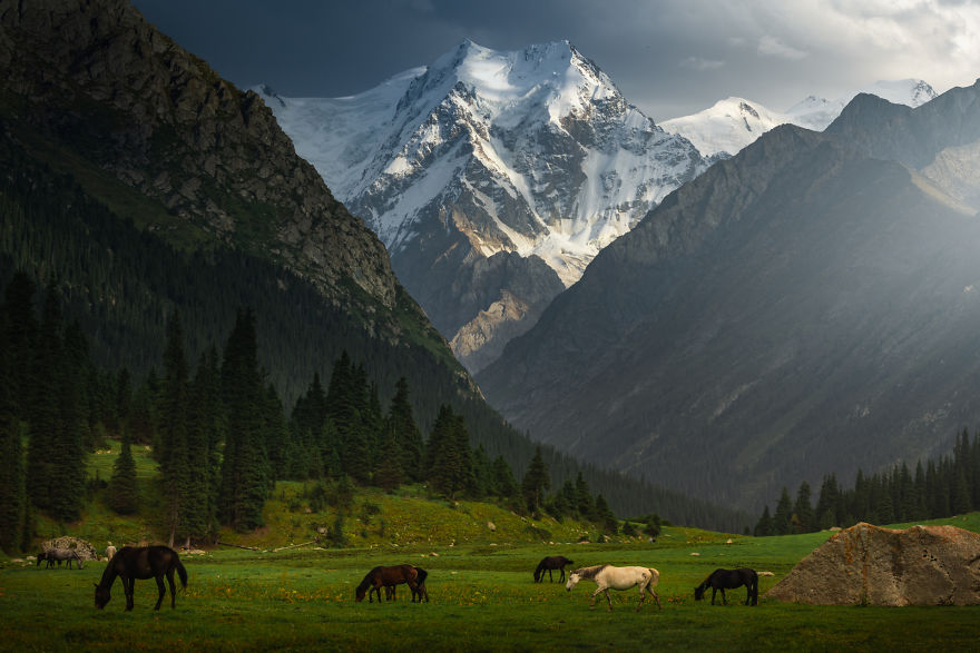 A Green Valley With Wild Horses And A View On Peak Yeltsin - This Is What Kyrgyzstan Is About