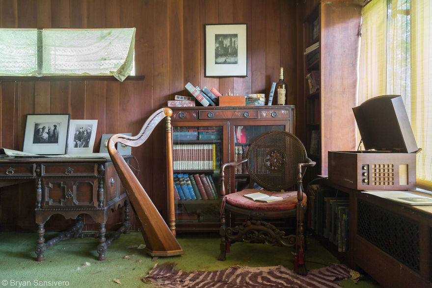 Zebra Rug, Harp, Old Photographs And Medical Library