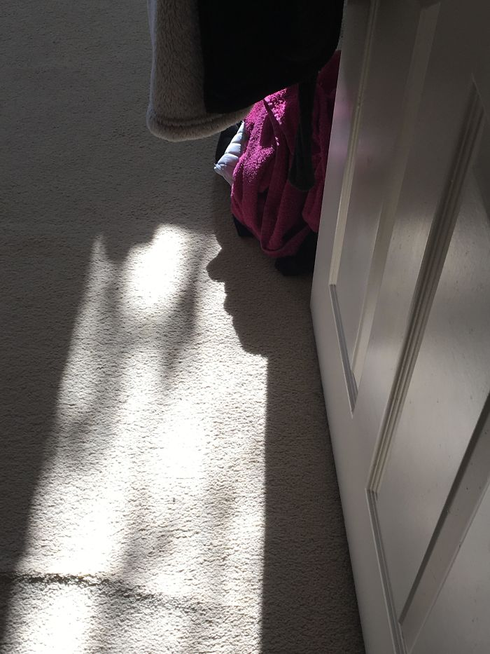 The Shadow Of My Bathrobe Looked Like A Face