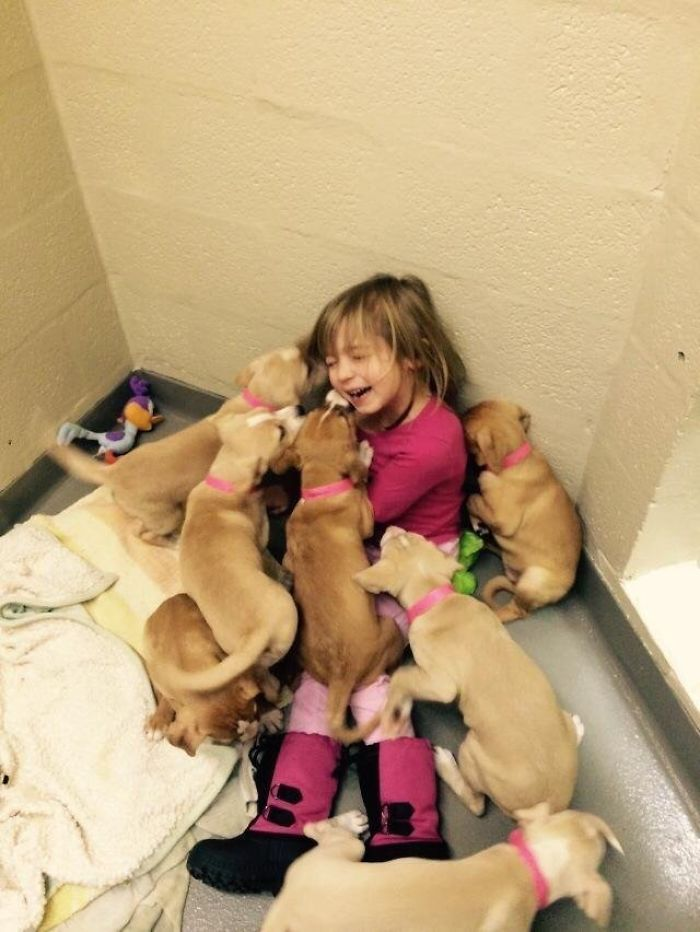 My Daughter Volunteering At Our Local Shelter, Helping Feed The Puppies. She Was Taken Down And Overpowered By Adorableness.