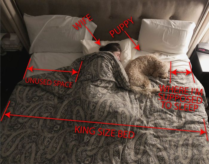 This King Size Bed Keeps Getting Smaller And Smaller