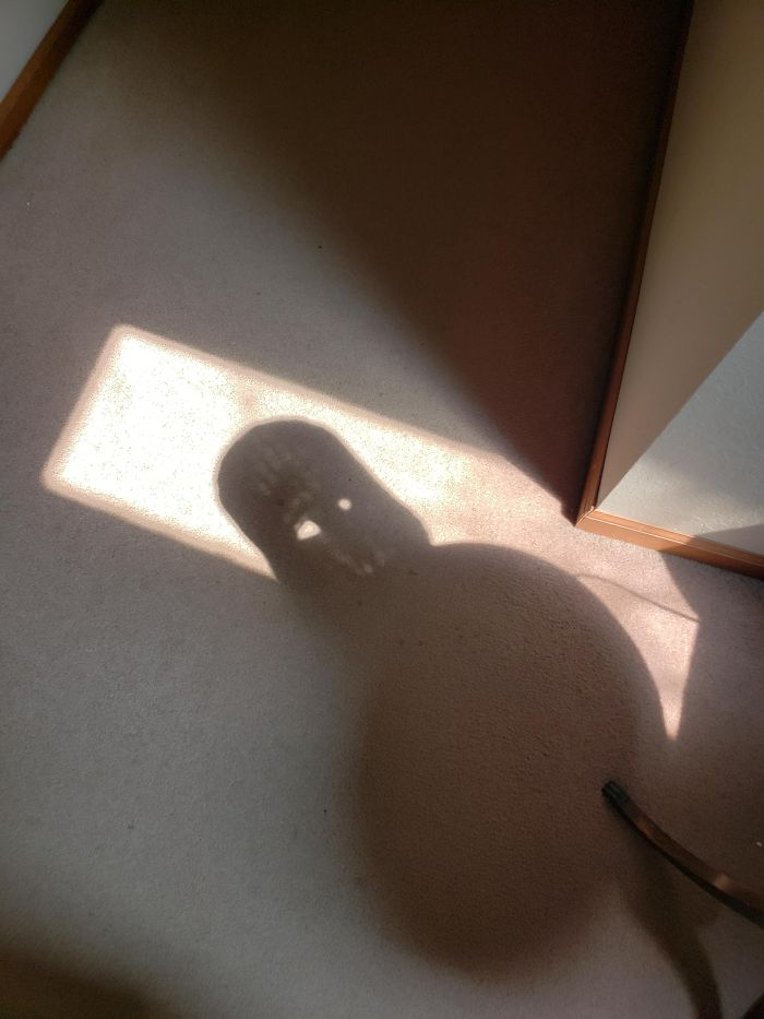This Shadow In My House Looks Like Darth Vader