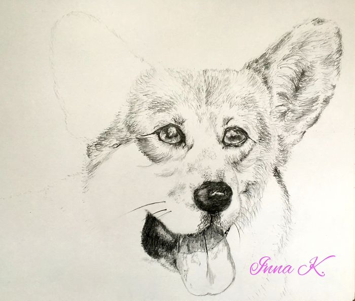 I Make Exclusive, Life-Like Portraits Of Pets And Here Is The Progress