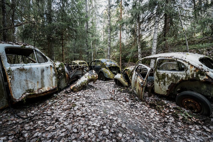 Abandoned Cars, Sweden