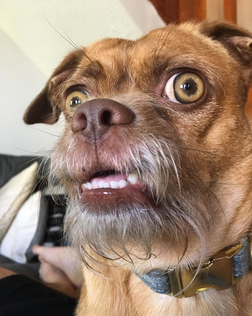When You Accidentally Open The Front Facing Camera