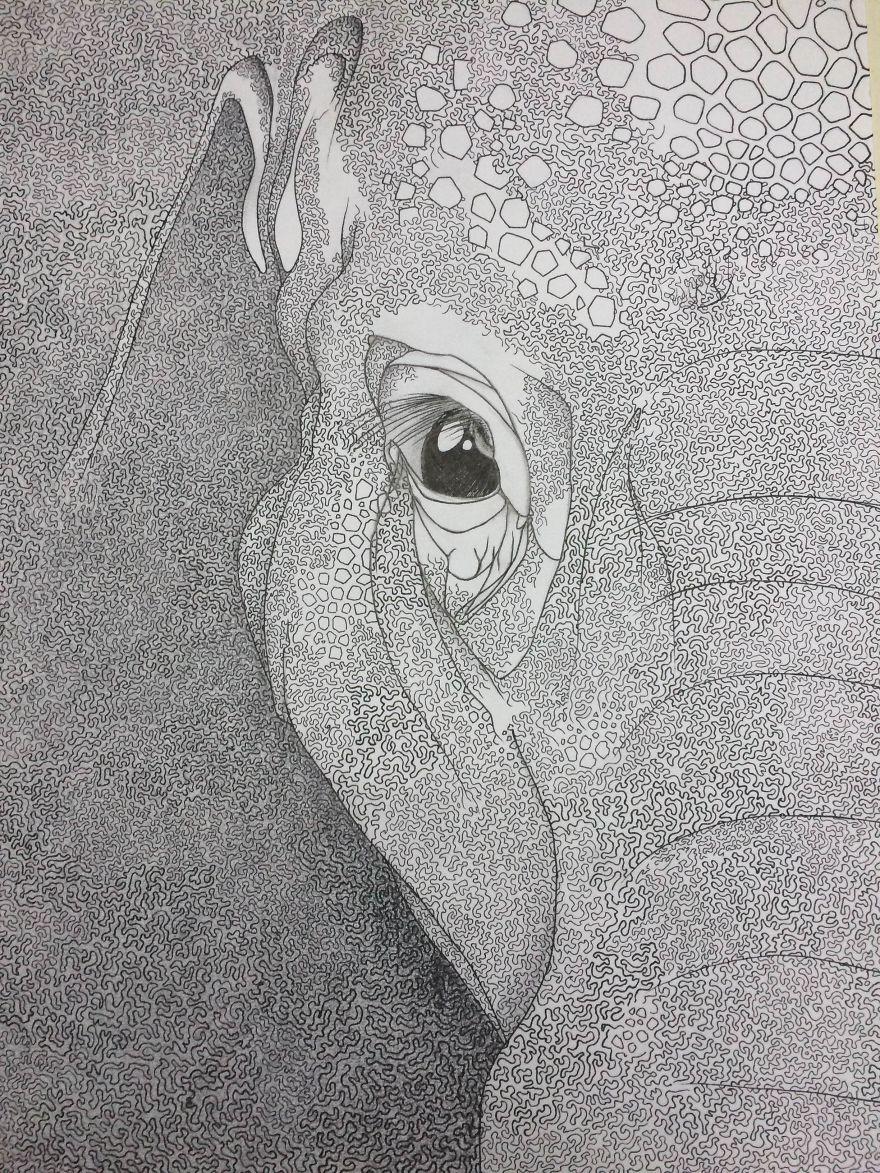 A Mazing Elephant Ii