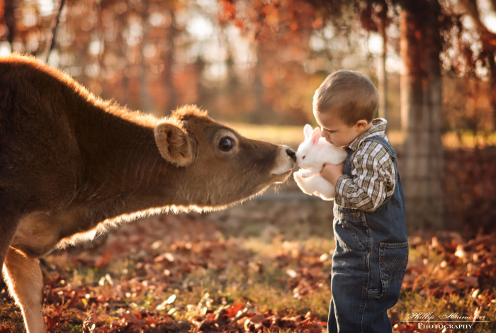 These Epic Photos Of Kids And Barnyard Animals Will Make You Wish You Grew Up On A Farm