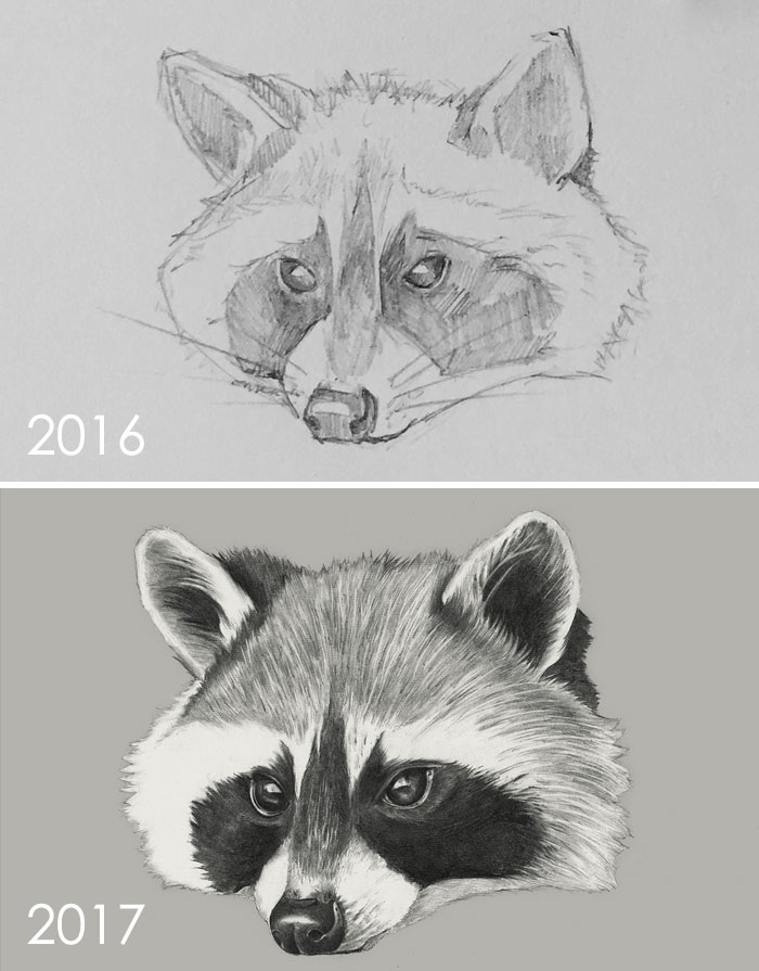One Year Drawing Progress