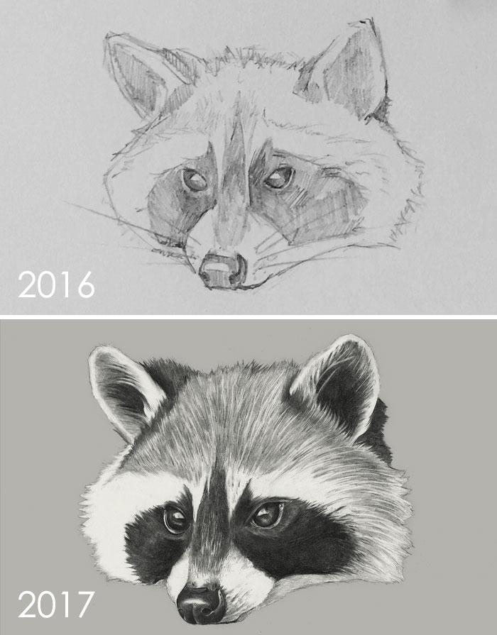 One Year Drawing Progress