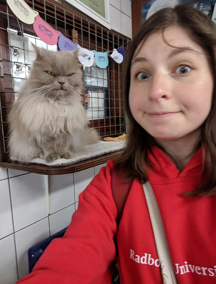I Visited A Cat Shelter On A Houseboat In Amsterdam And Met A Very Friendly Face