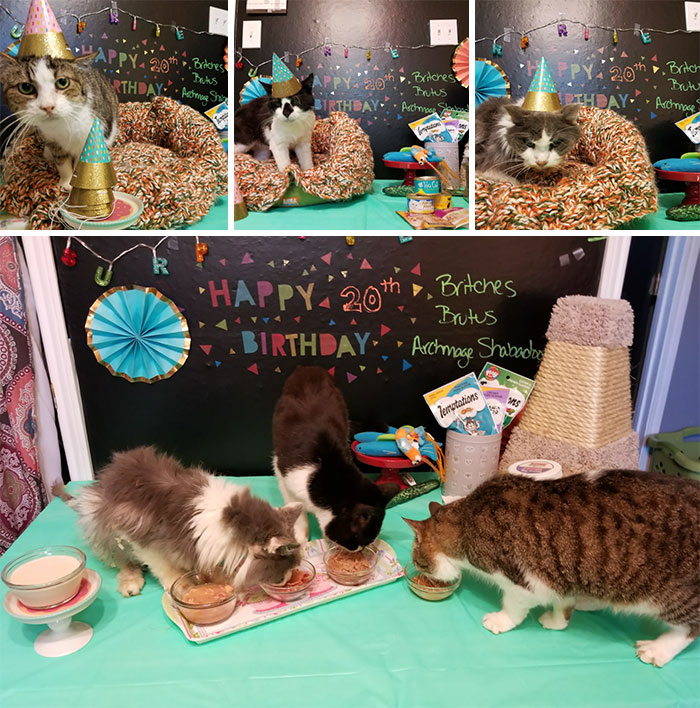 We Held A Surprise Birthday Party For Some Of Our Eldest