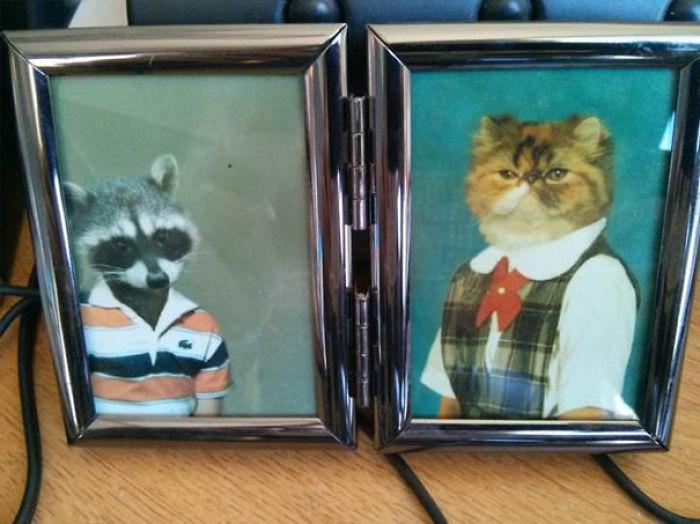 Es el último día de una compañera y me ha dicho que me puedo quedar sus fotos familiares