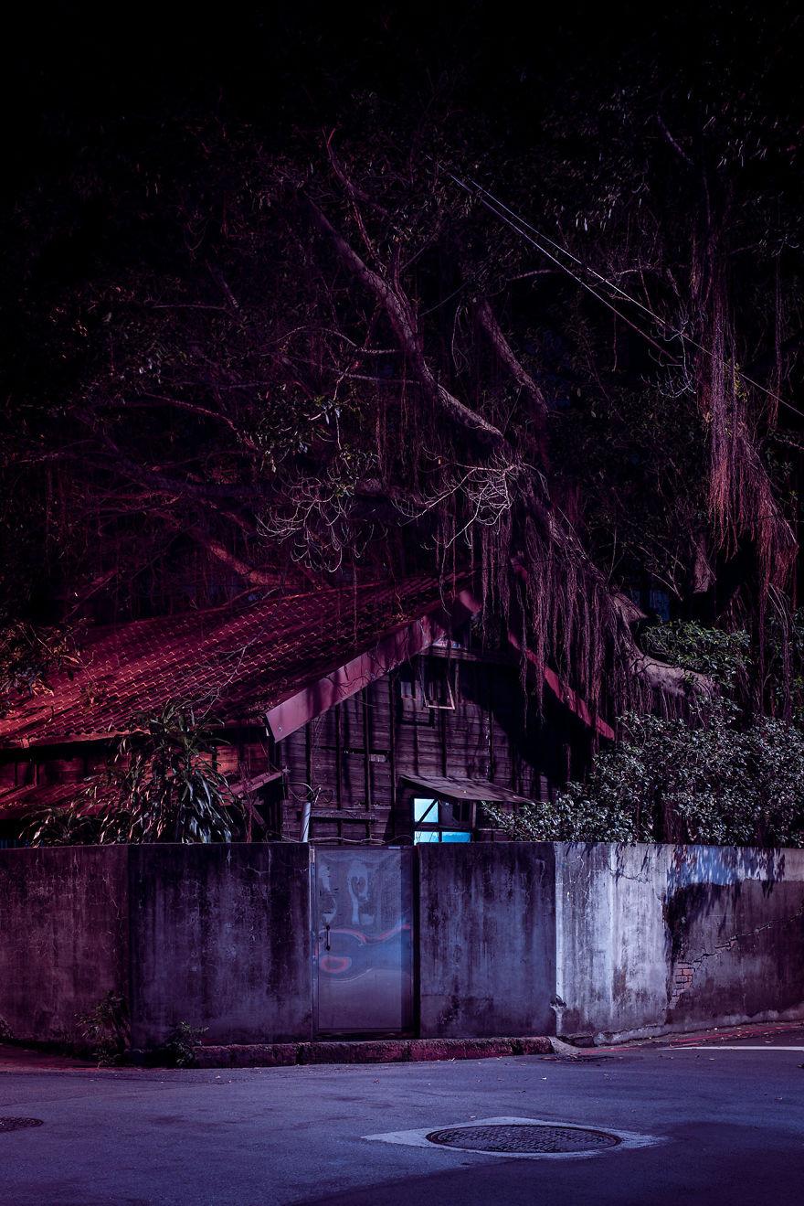 An Overgrown House