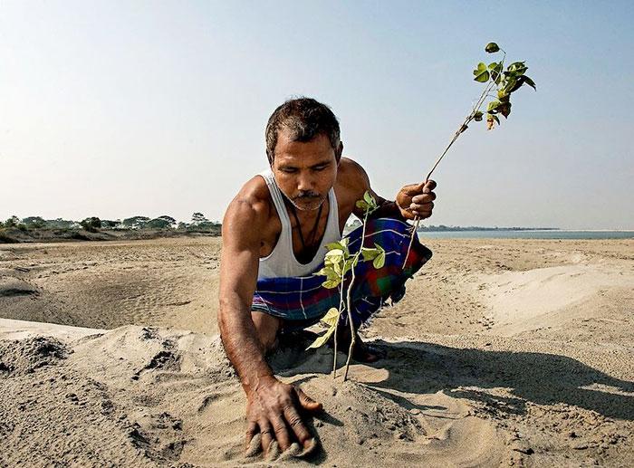 Hace casi 40 años, un chico de 16 años comenzó a plantar un árbol diariamente en una isla perdida, y ahora es irreconocible
