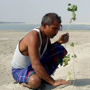 Almost 40 Years Ago A 16-Year-Old Started Planting A Tree Every Day On A Remote Island, And Now It's Unrecognizable