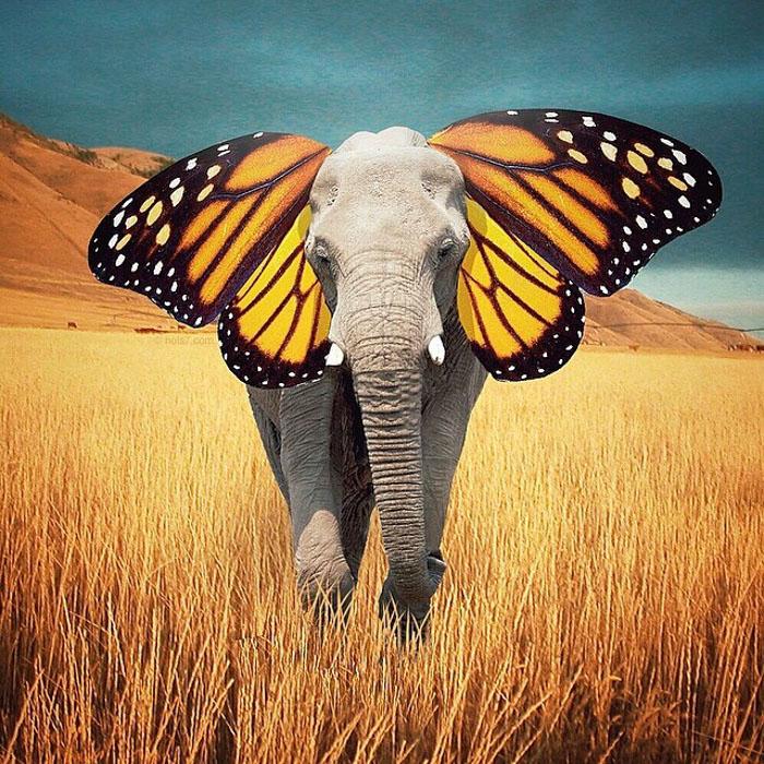 Surreal-Digital-Art-Photography-Photo-Manipulation-Robert-Jahns