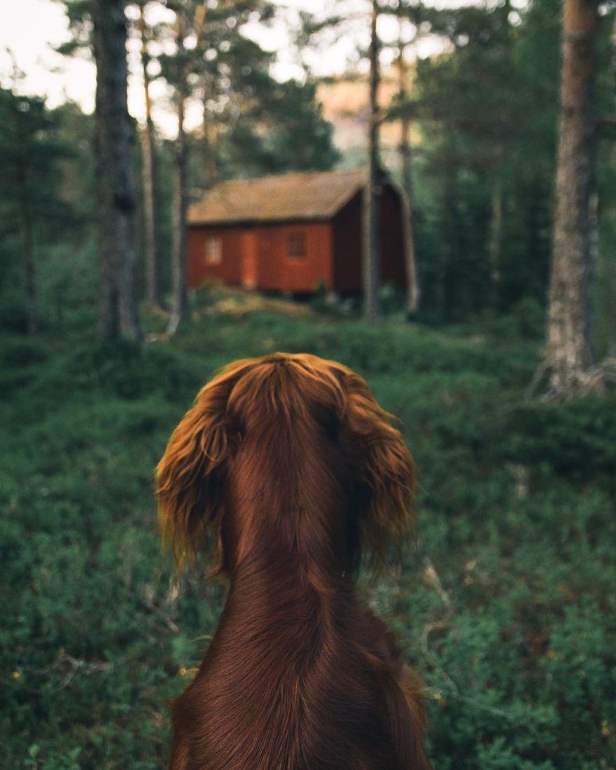The-Secret-Life-Of-Troja-Photography-George