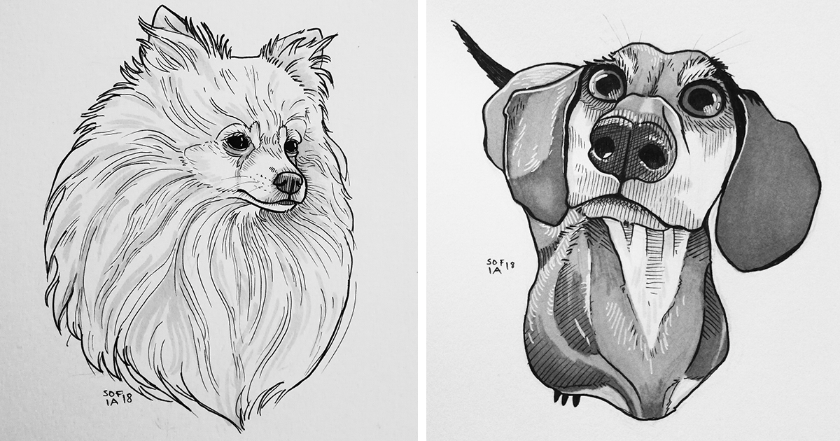 I Challenged Myself To Draw 30 Dogs In 30 Days   Bored Panda