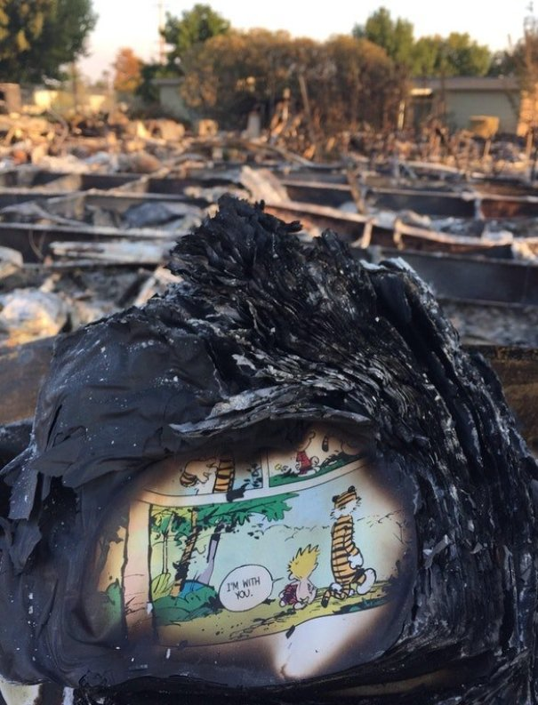 A Page Of A Calvin And Hobbes Book Found In The Ashes Of Someone's House After The California Fires