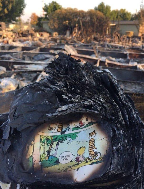 דף של קלווין והובס ספר נמצא באפר של ביתו של מישהו אחרי שריפות קליפורניה