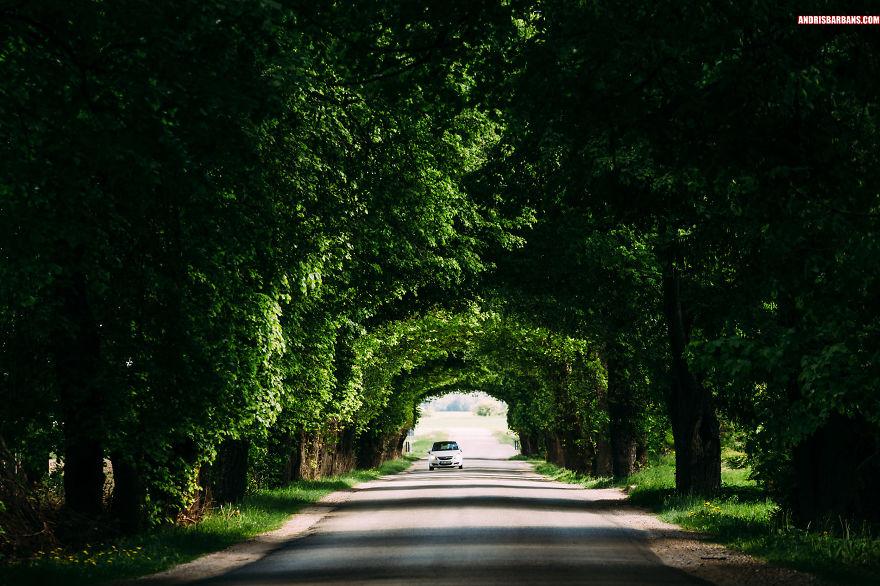 Scenic Road Somewhere In Kurzeme