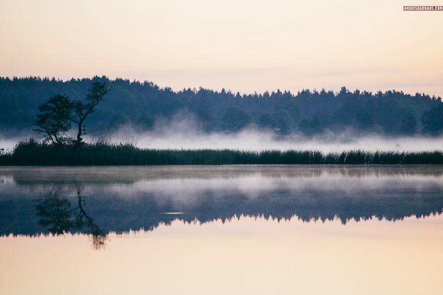 Forest Lake In Sloka