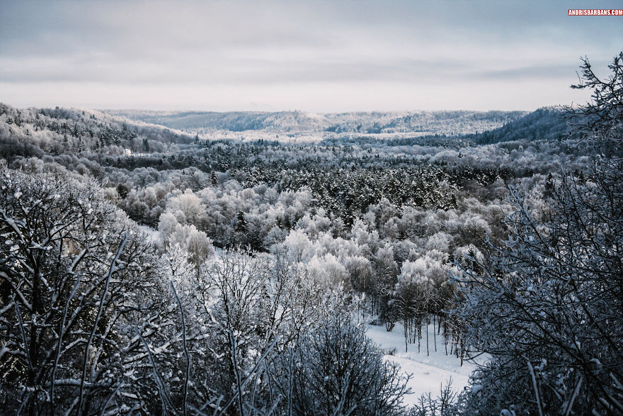 Valley In Sigulda