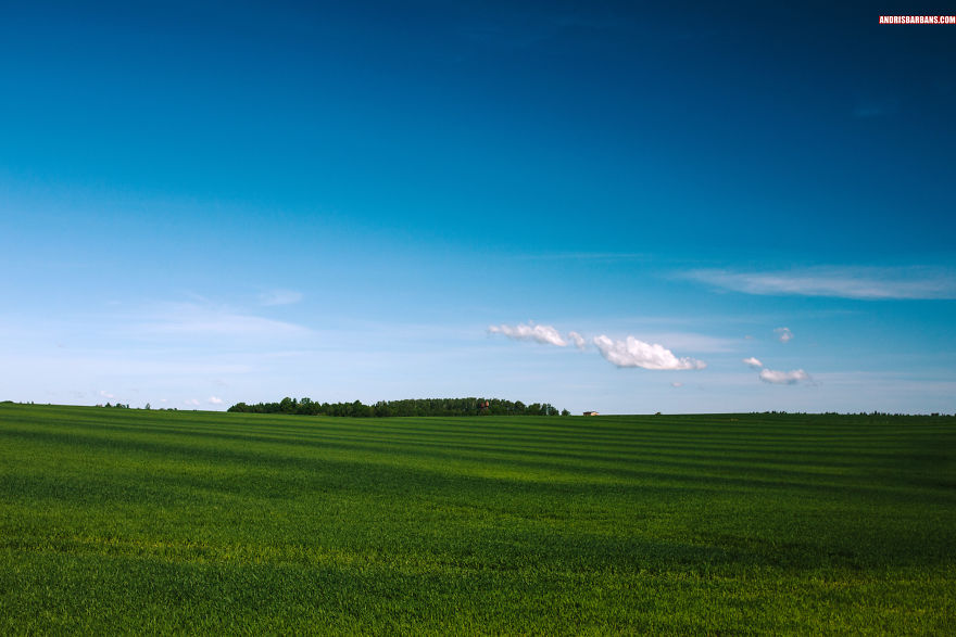 Green Meadow Near Kuldiga