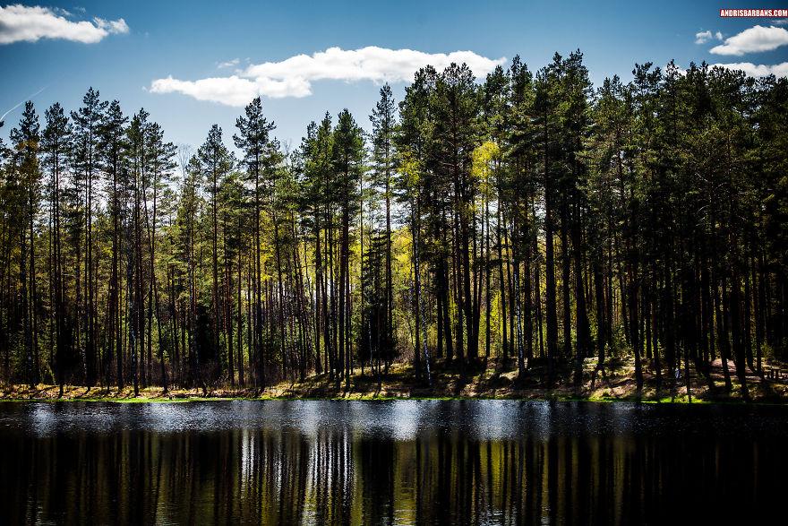 Forest Lake In Rezekne