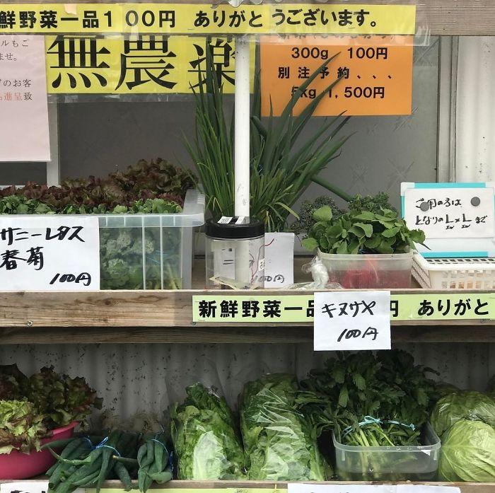 Tienda De Comestibles No Supervisada. Elige Lo Que Quieres Y Deja El Dinero En El Tarro