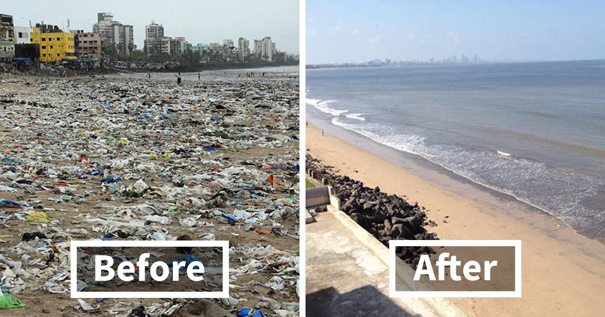 Schildkröten kehren nach 20 Jahren und der größten Aufräumaktion der Welt zurück an Indischen Strand und beweisen, dass wir Etwas verändern können