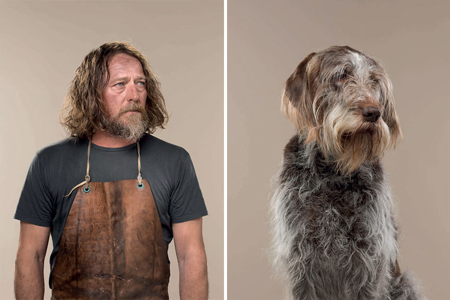 Harry & Hattie (Italian Spinone)