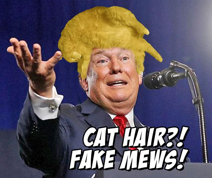 Fake Mews!