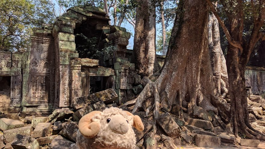 The Temples Of Angkor, Lost In The Jungle