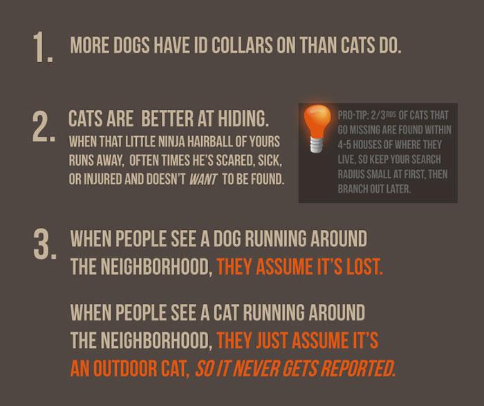 The-Kitty-Convict-Project-5ba8b2ecaecf5_