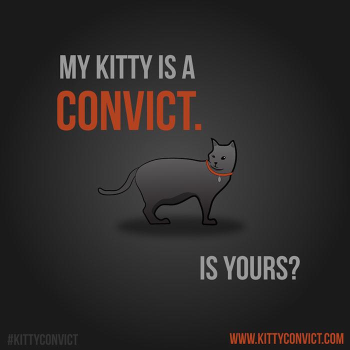 The-Kitty-Convict-Project-5ba8e14888445_