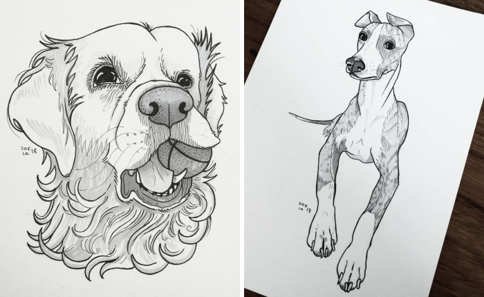 I Challenged Myself To Draw 30 Dogs In 30 Days