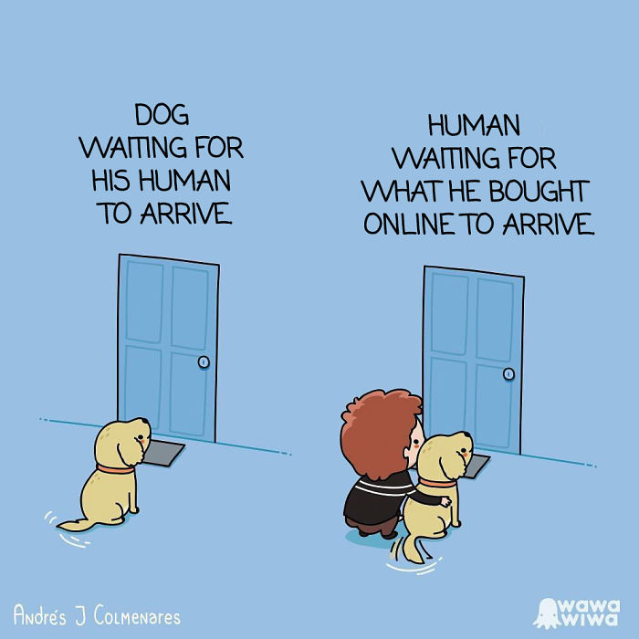 Dog Waiting For His Human To Arrive. ... Human Waiting For What He Bought Online To Arrive.