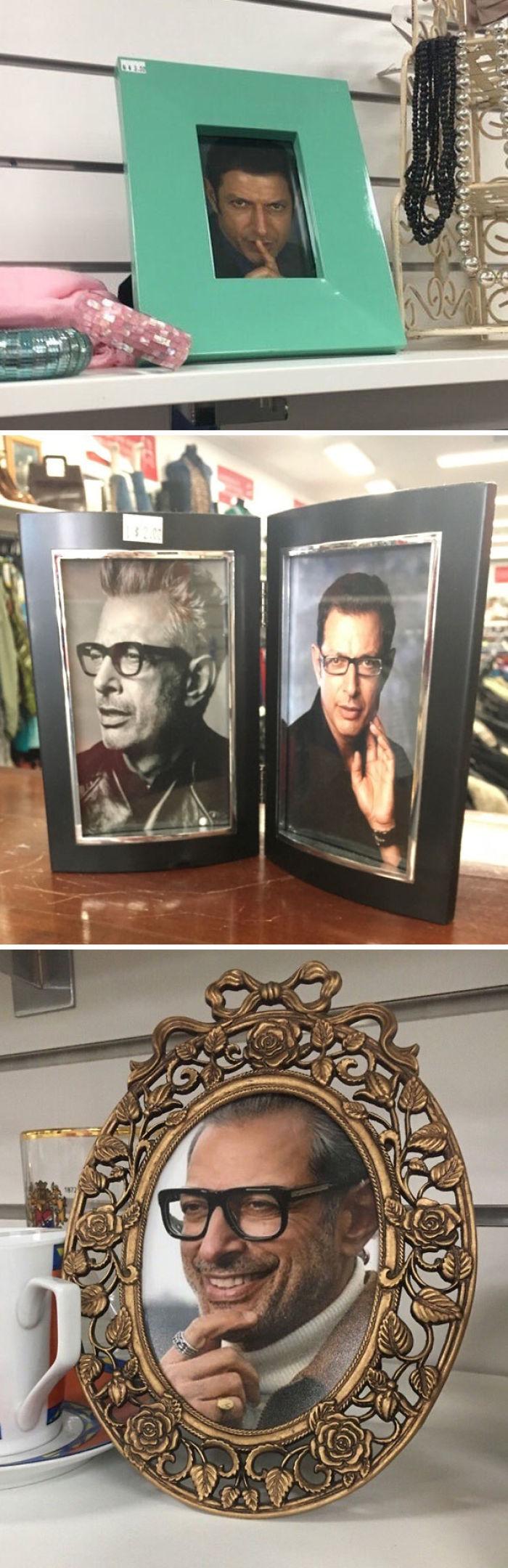 Uno de los que trabajan en la tienda de 2ª mano ha puesto a Jeff Goldblum en todos los marcos de fotos